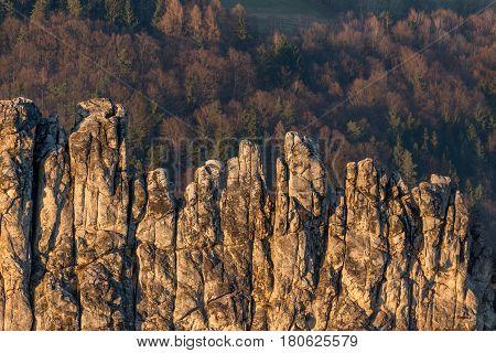 Dry Rocks in the Bohemia Paradise. Czech Republic