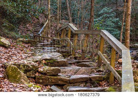 A stone walking path winds alongside Colt Creek near Saluda North Carolina.