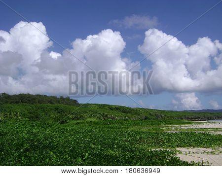 Clouds at Tank Beach, Saipan Thick white clouds above the the shoreline of Tank Beach, Saipan