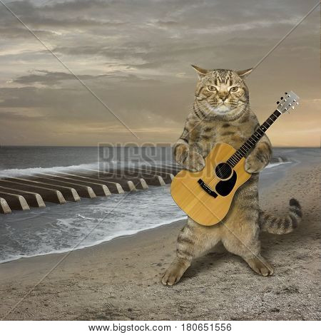 The cat with a guitar is on a deserted beach. The sea waves look like piano keys.