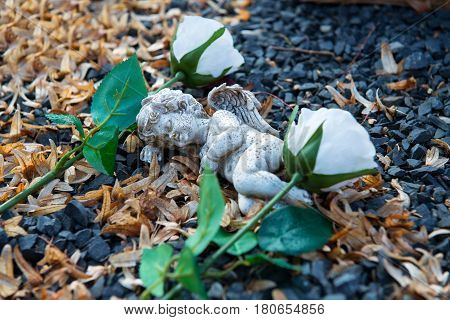 Little Angel  Between Two White Roses On Grave