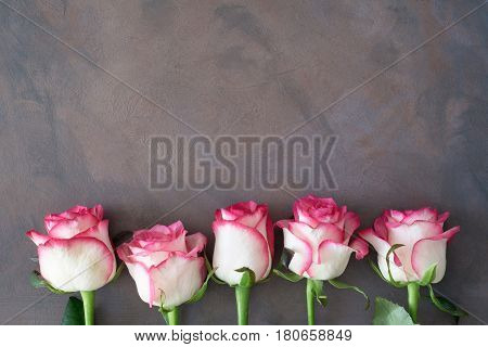 Frame with pink roses. Pink roses background. Mothers day floral background