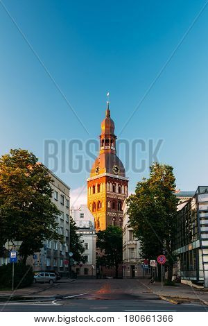 Riga, Latvia. Tower Of Riga Dom Dome Cathedral At Sunset Light. Sunny Blue Sky Background. Bellfry Bell Tower In Golden Hour At Sunset Or Sunrise Time