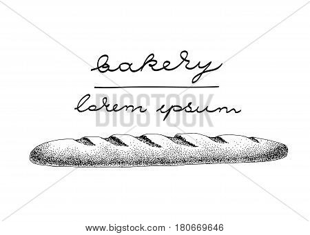 vector logo template with baguette. Can be use for bakery, pastry shop, restaurant, menu and cafe. Vintage illustration
