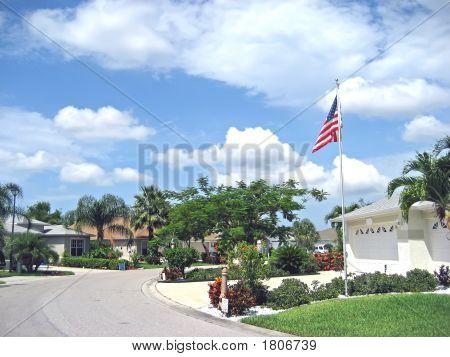 Tropical American Street 2.Jpg