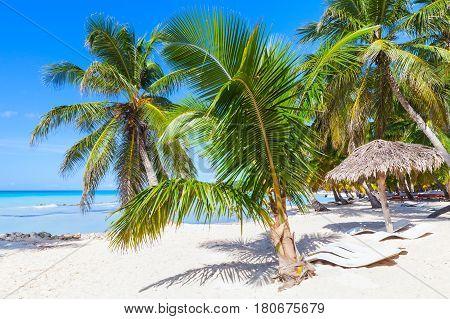 Saona Island Coast, Touristic Resort