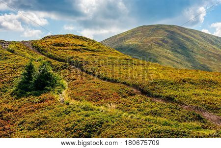 Path Through A Meadows Of Mountain Ridge