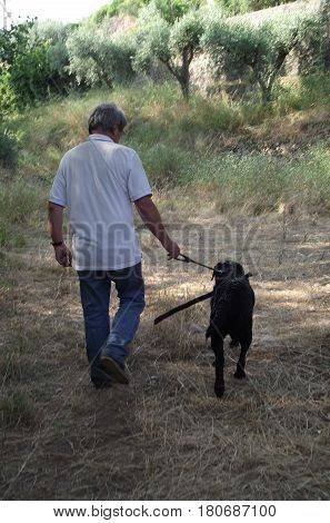 Man and his best friend walking home