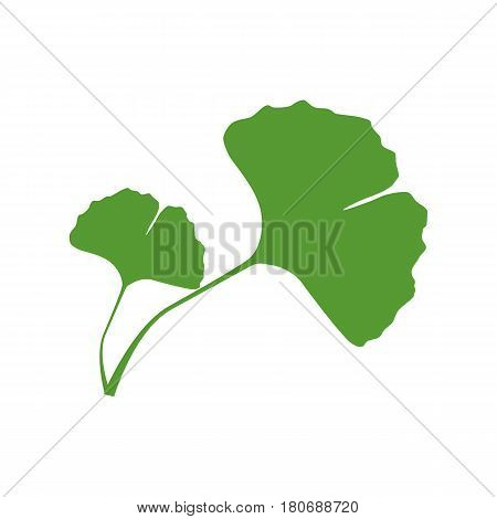Isolated one color green silhouette of two leaves of ginkgo biloba on white background