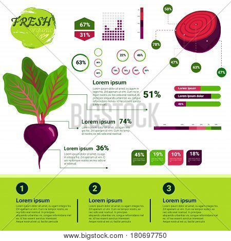 Fresh Organic Infographics Natural Vagetables Growth, Agriculture And Farming Flat Vector Illustration