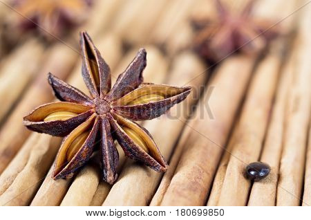 A star anise with a seed on cinnamon sticks. Selective focus.