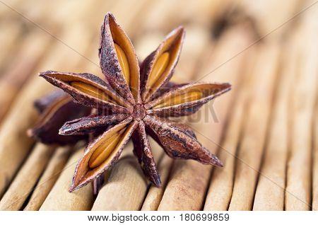 A star anise with on cinnamon sticks. Selective focus.