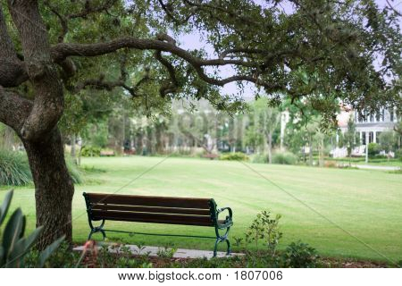 Picnic Bench In The Park