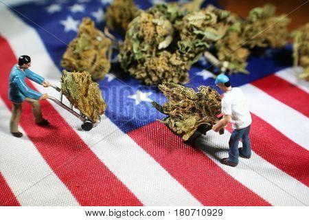 Marijuana ( Land Of The Free ) High Quality