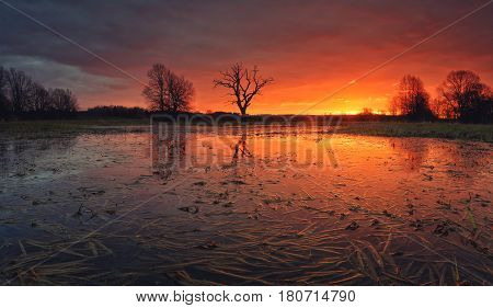 Gorgeous sunrise over swamp. Colorful cloudscape above flooded meadow. Flooded meadow in the morning before rain. Beautiful morning background.