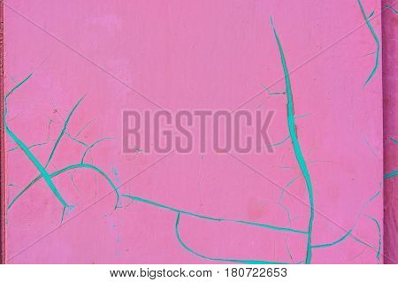 Close up bright pink cracked paint with cian color in cracks abstract background texture