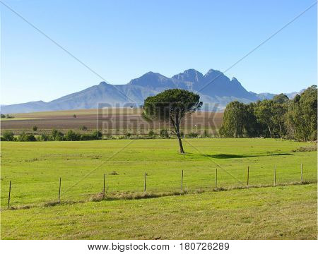 LANDSCAPE, WITH A FIELD IN FORE GROUND AND TREES AND MOUNTAINS IN THE BACK GROUND 19z