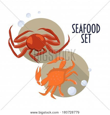 Seafood set. Two crab icons or illustrations: king crab and maryland crab