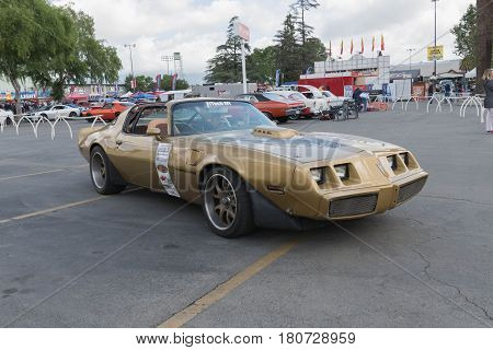 Pontiac Firebird On Display