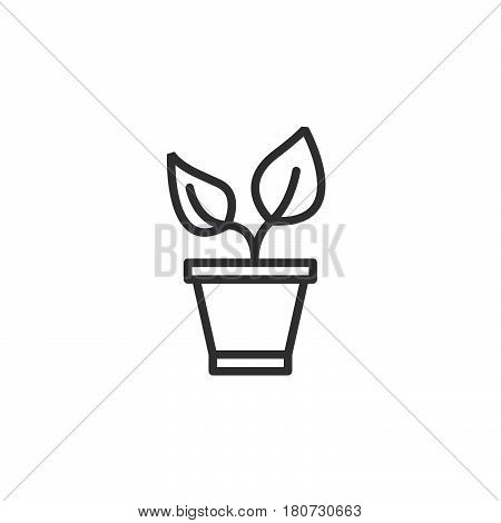 Plant in the pot line icon outline vector sign linear style pictogram isolated on white. Sprout symbol logo illustration. Editable stroke. Pixel perfect