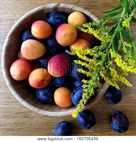 осень урожай лето чаша сливы абрикосы натюрморт краски фрукты summer autumn harvest bowl of plums and apricots still life paint fruit
