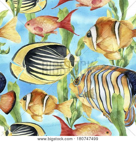Watercolor underwater pattern. Hand painted tropic fish: angelfish, butterflyfish, clownfish and laminaria on blue background. Tropic sea illustration