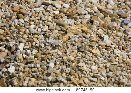 Texture with lot of pebble stone in sunlight, stone background - smaller variation