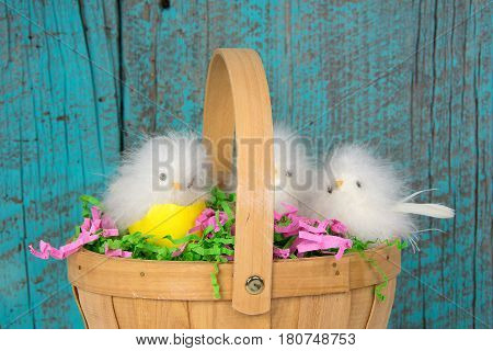 fuzzy Easter chicks with yellow eggshell in wooden basket