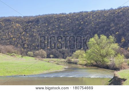 idyllic scenery with small river and mountain