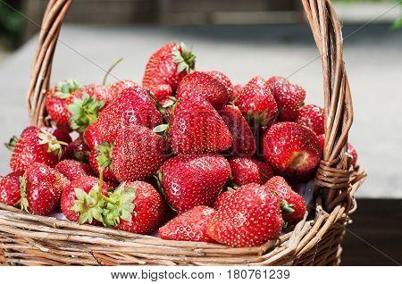 Fresh strawberries in a straw basket. Strawberry