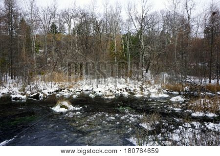 Snow and ice on the West Fourth Street Swamp in Harbor Springs, Michigan during November.