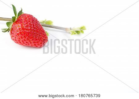 Fresh ripe strawberry isolated on white background.