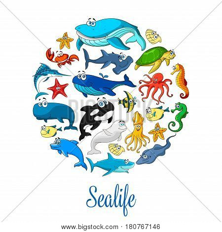 Sealife poster of sea dolphin, whale and shark, seal, starfish and seahorse, stingray and turtle. Vector ocean animals squid and jellyfish, clown fish or flounder, lobster crab and octopus
