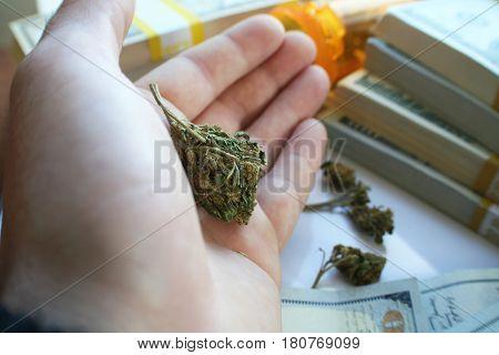 Marijuana Bud In Hand With Money High Quality