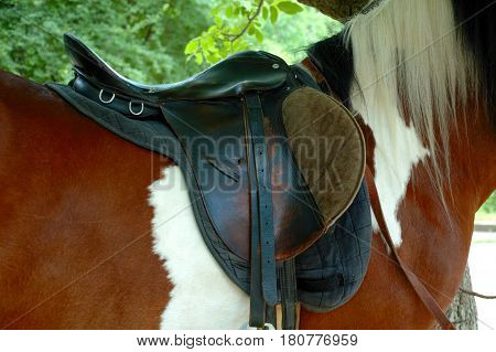 Detail of a horse saddle horizontal shot.