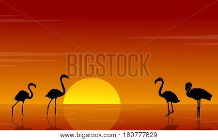 Collection of flamingo silhouette scenery vector illustration
