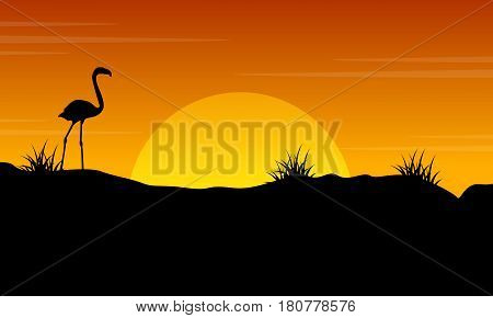 Beauty scenery flamingo at sunset silhouette vector art