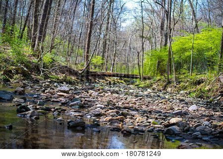 Rocky River in Forest during outdoor hike on Sabbath