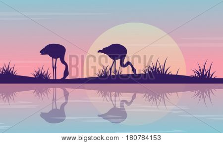 Silhouette of flamingo on riverbank at sunrise scenery vector