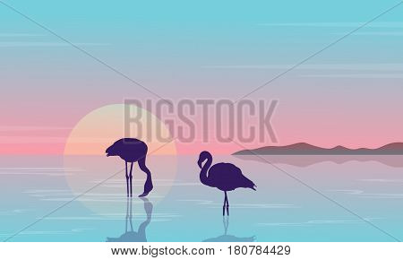 Collection stock flamingo silhouette beauty scenery vector art