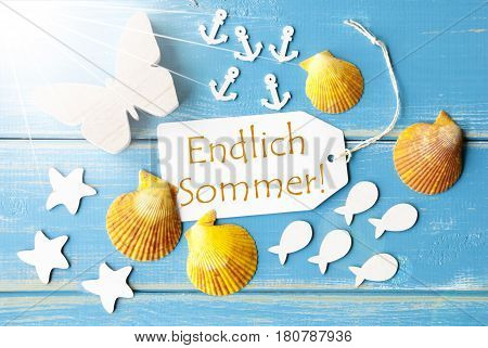 Flat Lay View Of Label With German Text Endlich Sommer Means Happy Summer. Sunny Summer Greeting Card. Butterfly, Shells And Fishes On Blue Wooden Background
