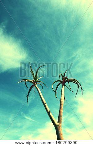 Neon Palm Tree