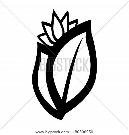 a Simple flat black spices icon vector