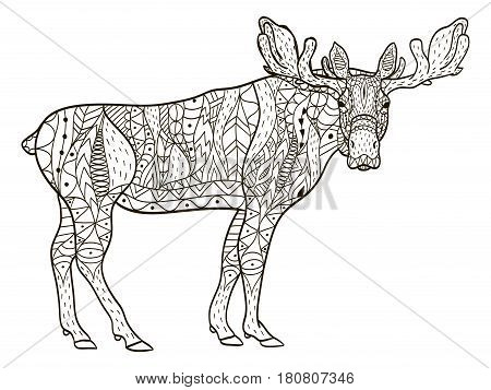 deer coloring book vector illustration. Anti-stress coloring for adult. Zentangle style. Black and white lines. Lace pattern