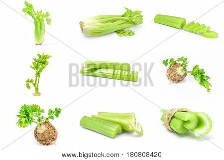 Collage of celeriac isolated on a white background cutout