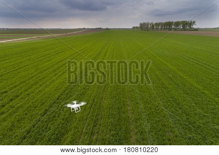 Drone Flying Over Wheat Field