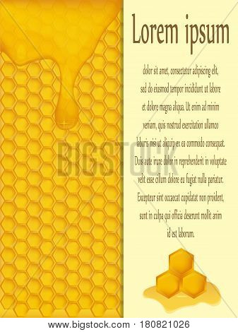 vector realistic vertical pattern with a honey background. place for your text information. design products containing honey or honey fragrances