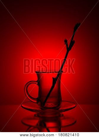 Beautiful glass tea cup on a red background