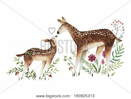 Isolated on white background watercolor deers. Hand drawn baby deer and mom deer with flowers mushrooms and berries.