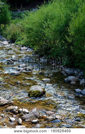 River. Landscape in Apuseni Mountains, Transylvania. The Apuseni Mountains is a mountain range in Transylvania, Romania, which belongs to the Western Romanian Carpathians